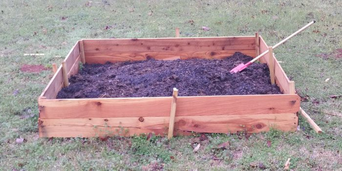 Our first 6x6'  square of potential vegetables!