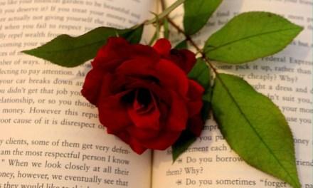 Fifty Shades of Fiction Culpability