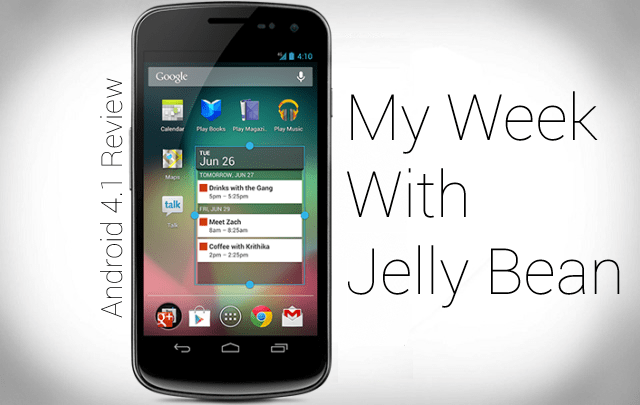 jelly bean review