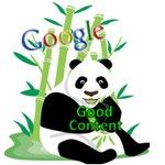 Google desmiente haber haber actualizado su algoritmo y aún así, varios siguen sin creer