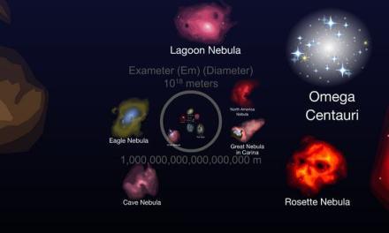 La Escala del Universo, compárate contra otros seres vivientes y elementos del Universo