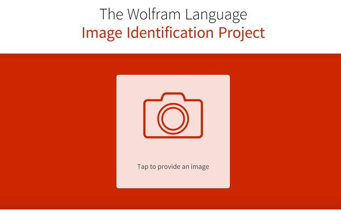the-wolfram-language-image-identification-project