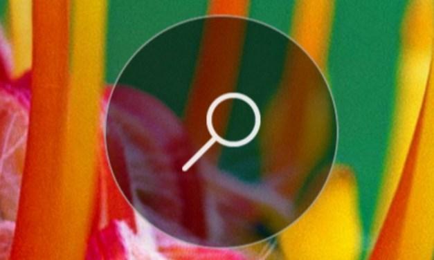 Aplicación Bing para iOS y Android ahora es compatible con AMP