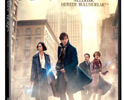 Fantastic Beasts_DVD