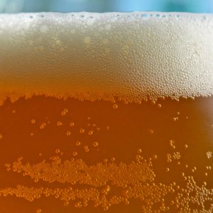 beer_img00