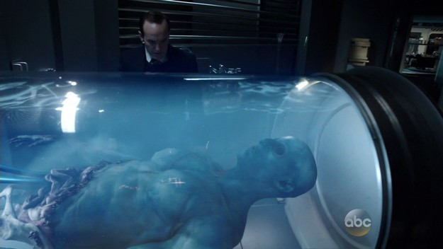 Agents of SHIELD S02E07 Kree