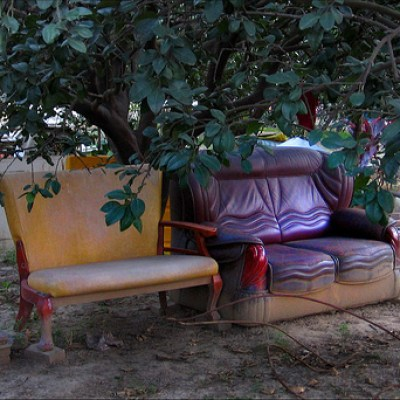 couches under a tree