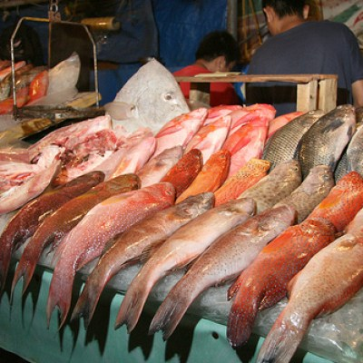 fish for sale in a wet market