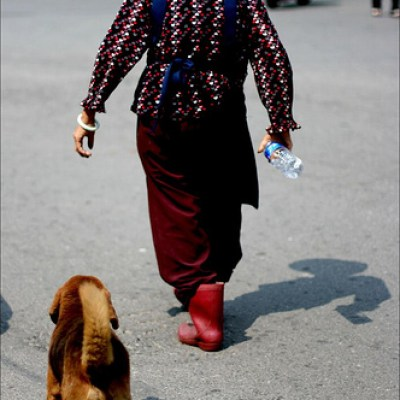 woman and dog walking
