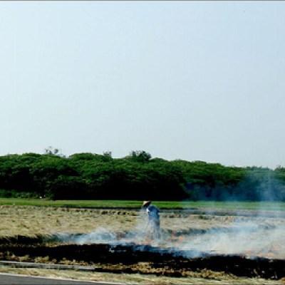 field of smoke