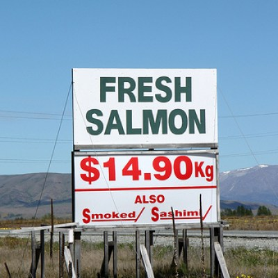 high country salmon