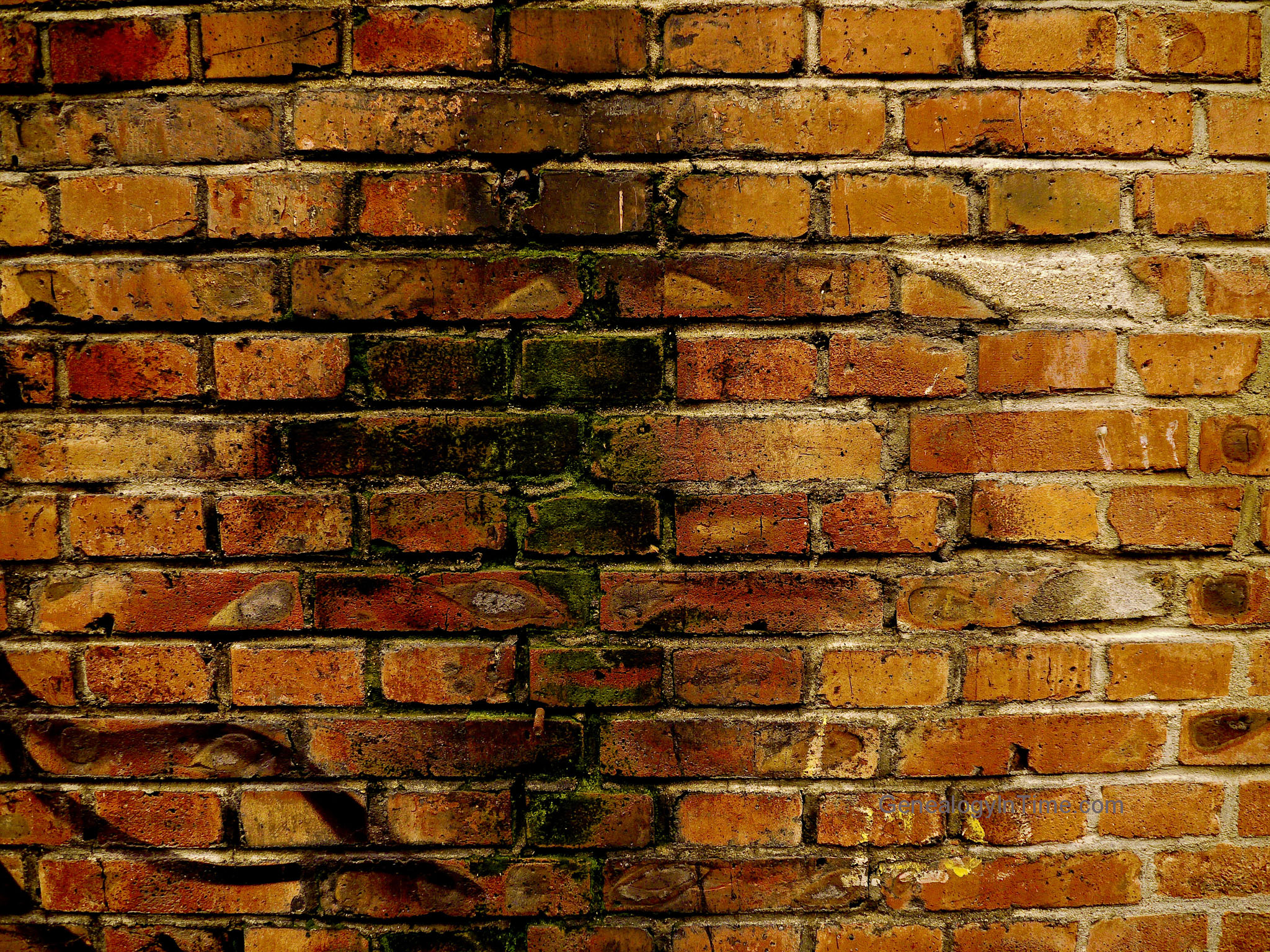 How To Add Brick To A Wall Free Brick Wall Images Page 5
