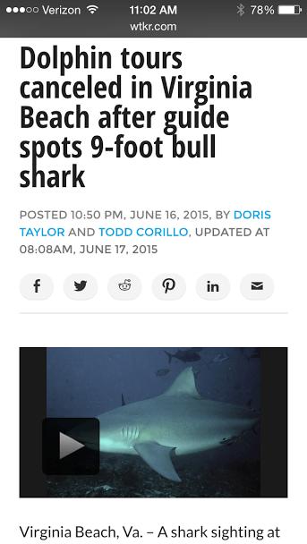 shark in virginia beach