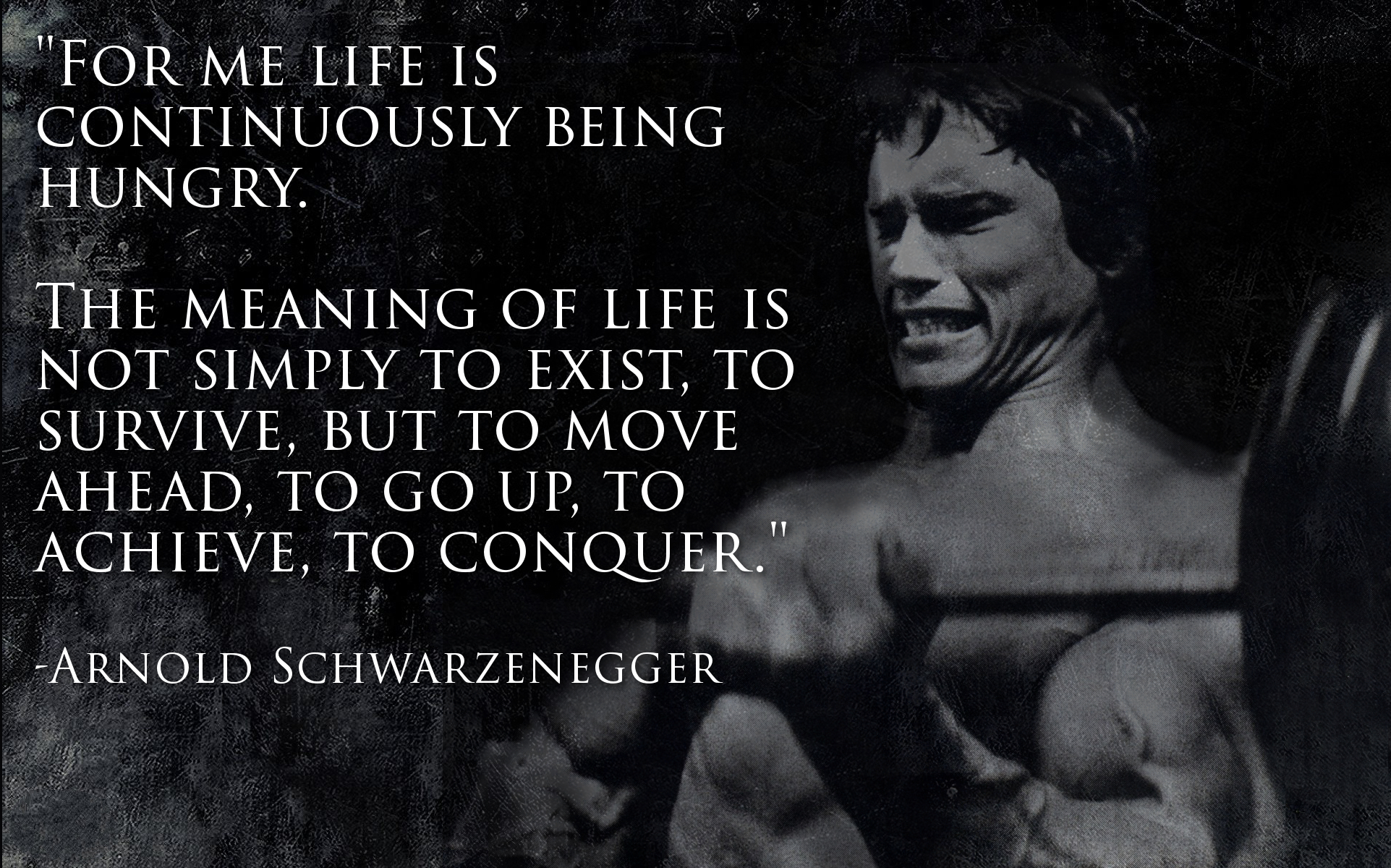 Bill Gates Quotes On Success Wallpaper Arnold Schwarzenegger Fitness Quotes Quotesgram