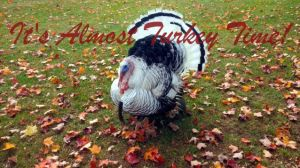 It's almost Turkey Time