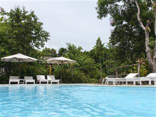 Palm Village Pool