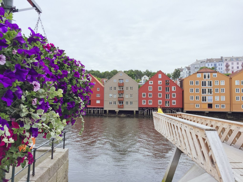 The colorful city of Trondheim!