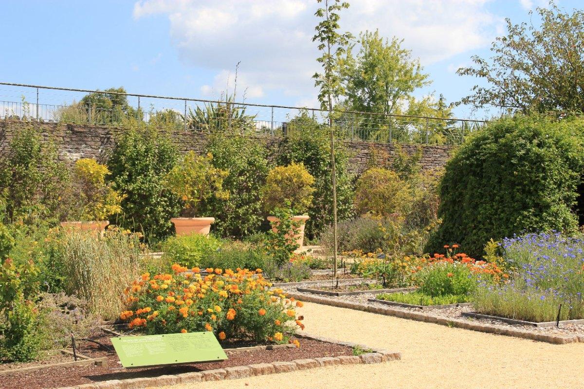 Yves rocher un grand pr dateur de plantes geographica for Jardin yves rocher
