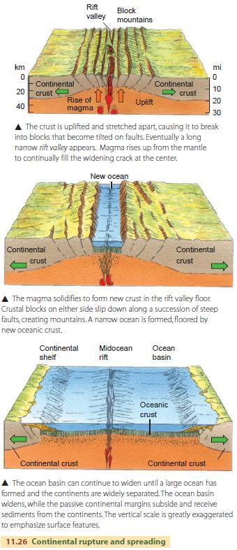 Physical Geography Plate Tectonics