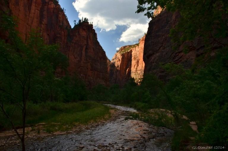 12 DSC_1880 Virgin River Zion NP UT g (1024x678)
