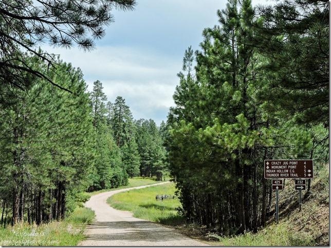 Sign FR425 Kaibab National Forest Arizona