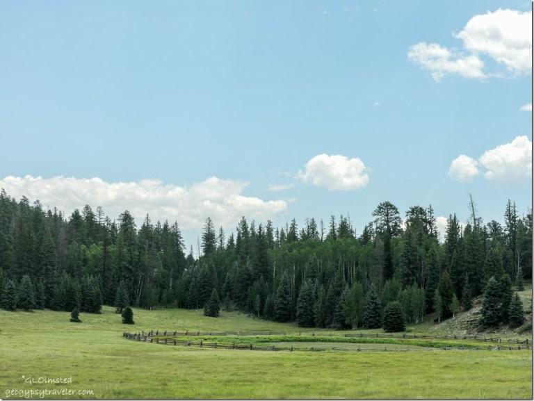 Crane Lake SR67 Kaibab National Forest Arizona