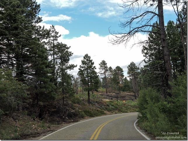 2016 Fuller Fire scenic road North Rim Grand Canyon National Park Arizona
