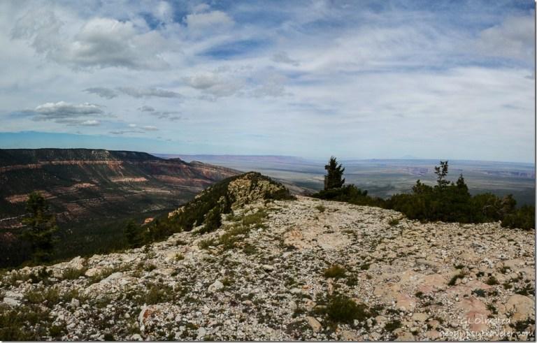 Kaibab monocline, Vermilion & Echo Cliffs, Marble Plateau & Canyon Marble View Kaibab Kaibab National Forest Arizona