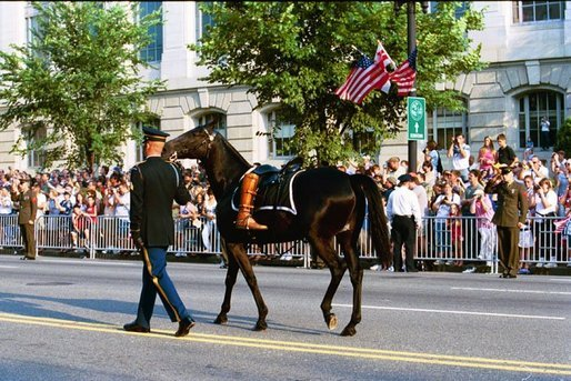 A Riderless Black Horse With A Pair Of Former President