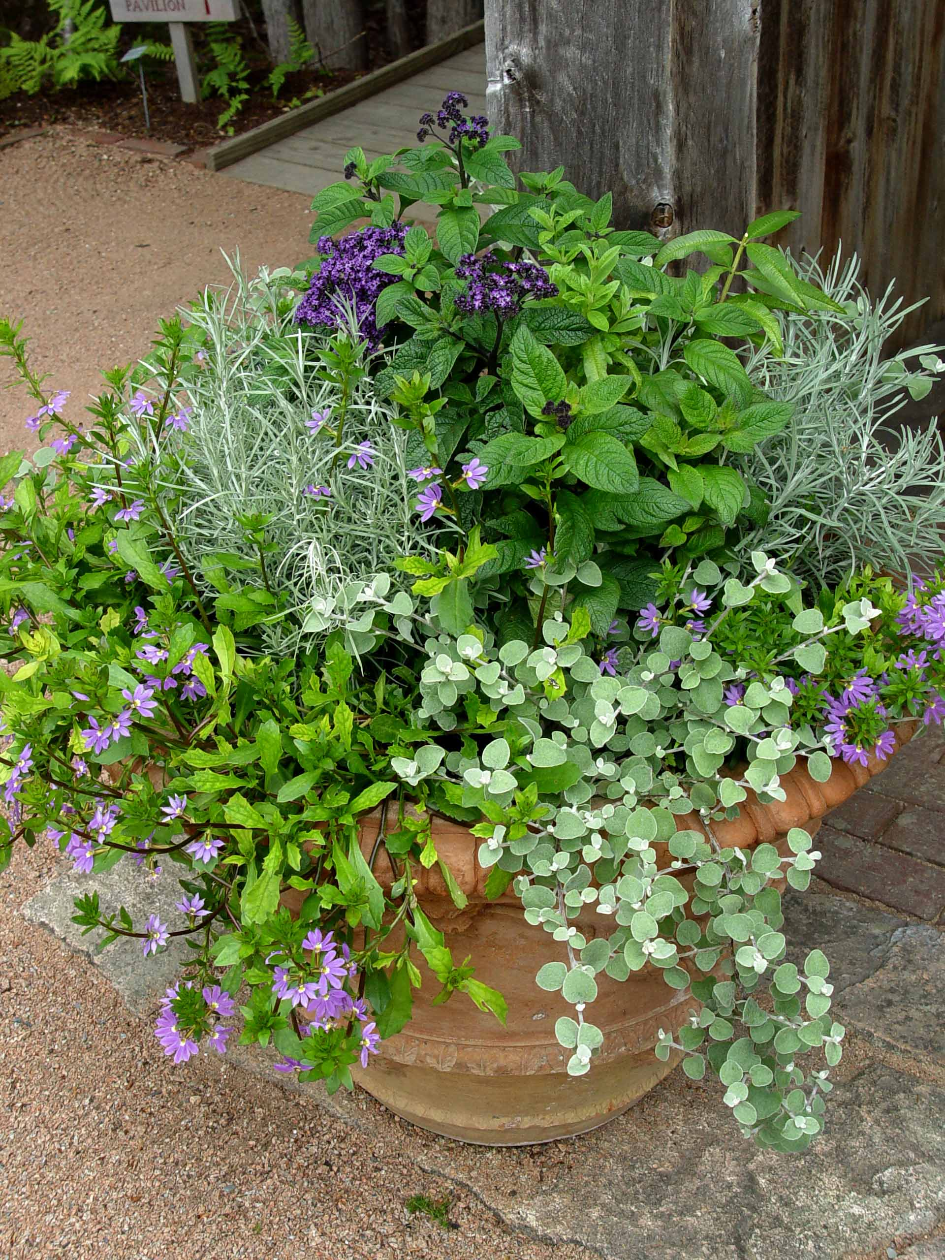 Charmful Containers Pot Ways To Pot Garden Garden Housecalls Herb Garden Containers Garden Pots garden Creative Garden Containers