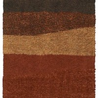 Seasons Change and So Do Trends, Adapt with Shaw Area Rugs