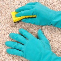 Every Kind of Carpet Stain Cleaning Guide!