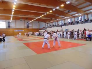 open masters judo 2018 Gérardmer (4)