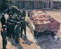 """Rheinwiesenlager mit deutschen Leichen auf einem Lastwagenanhänger gestapelt mit """"amerikanischen"""" Soldaten daneben"""