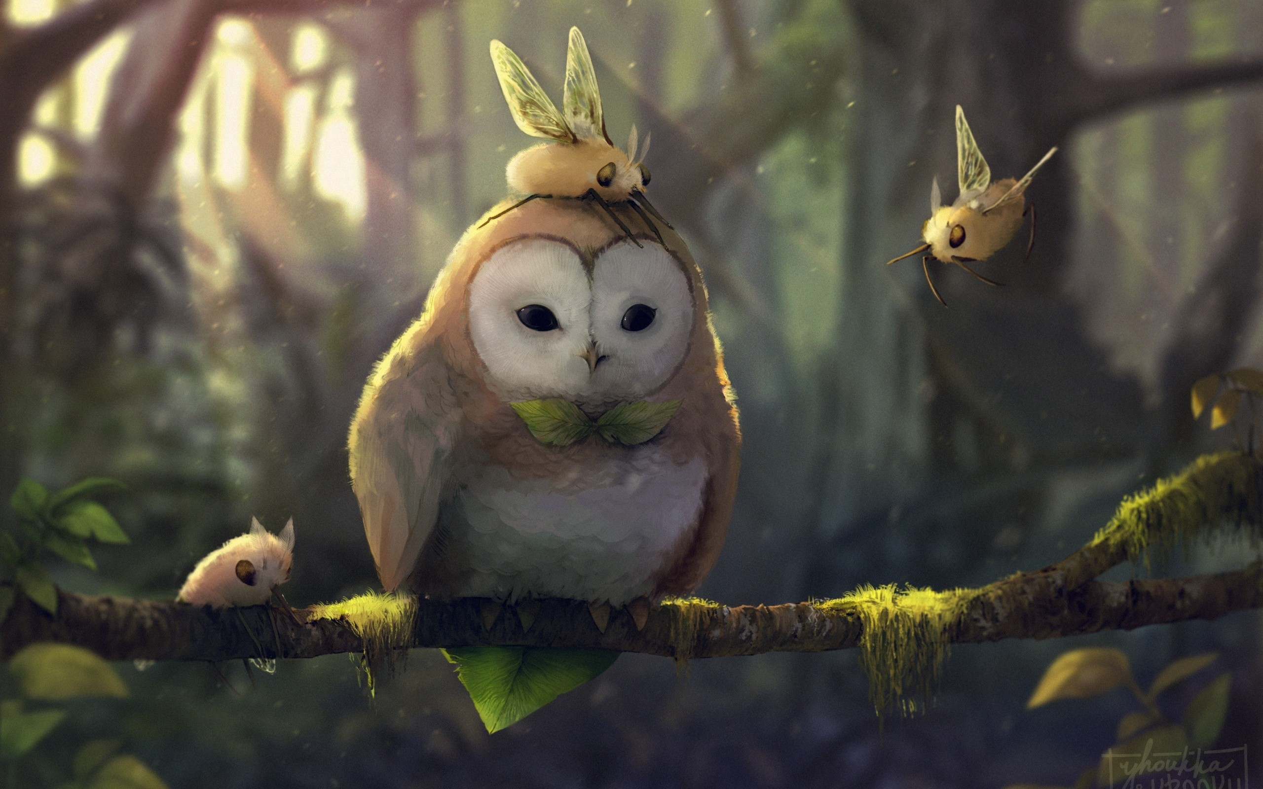 Fall Owl Wallpapers デスクトップ壁紙 ファンタジーアート 自然 アートワーク ブランチ ポクモ 野生動物 フクロウ
