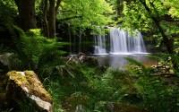 Wallpaper : waterfall, garden, nature, grass, shadow ...