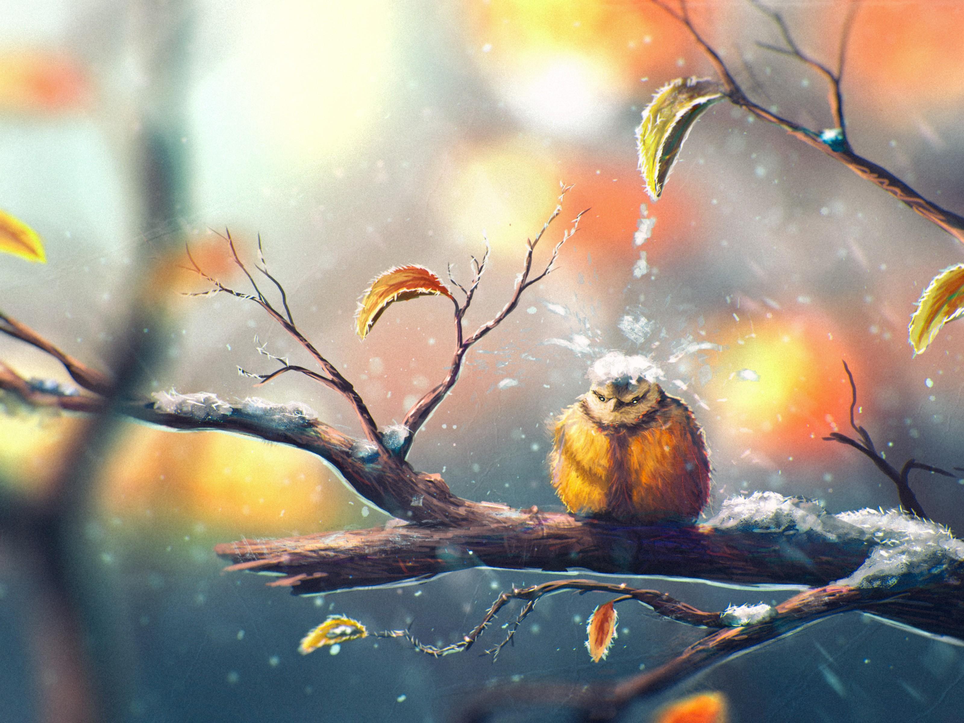 Fall Bird Wallpaper Fondos De Pantalla Luz De Sol Dibujo Pintura Oto 241 O