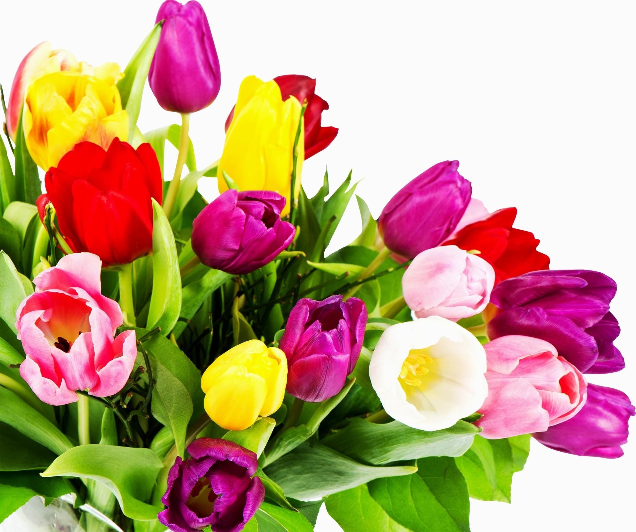 Goodfon Wallpaper Car Wallpaper Tulips Flowers Bouquet Bright Colorful