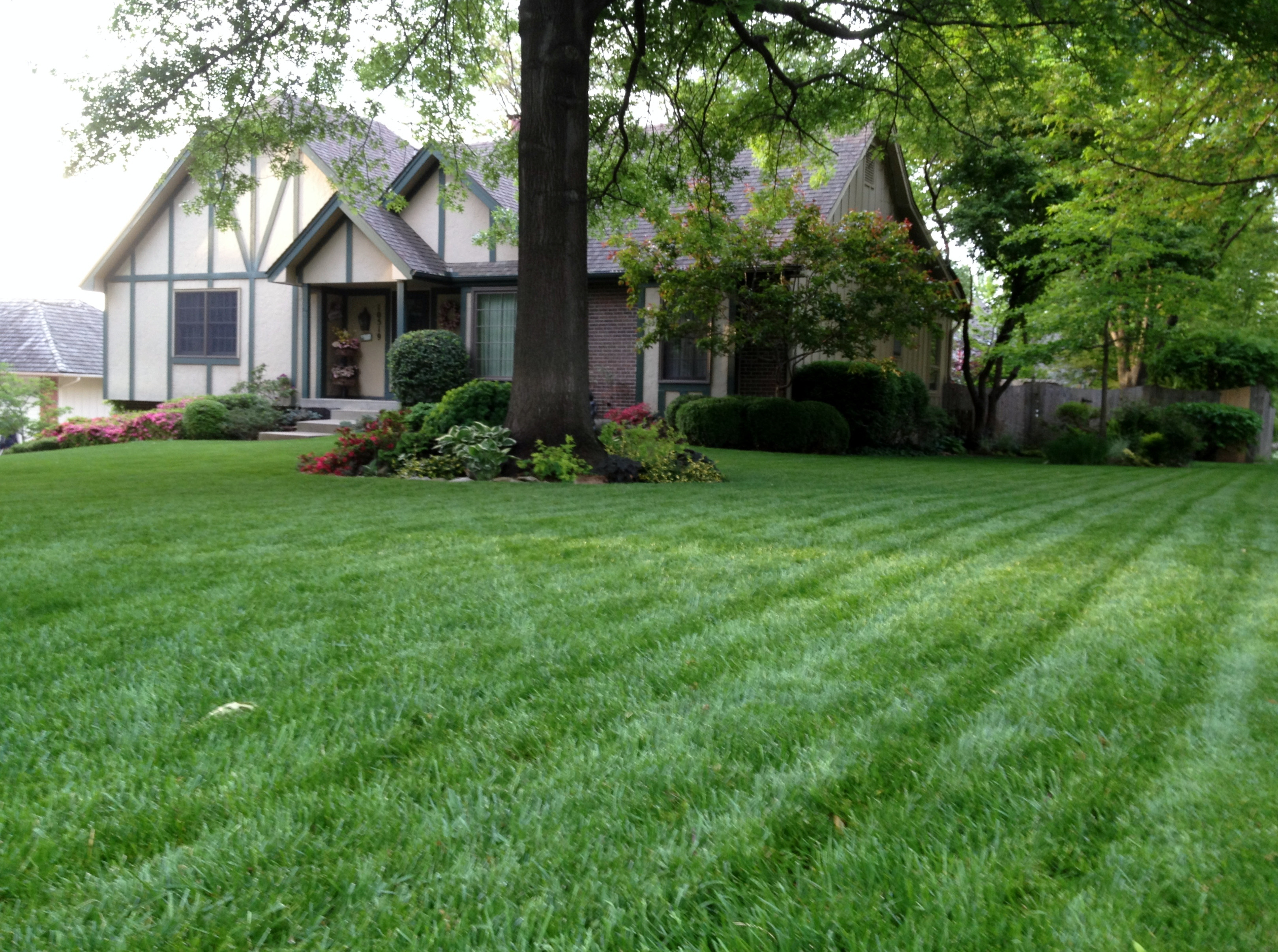 Fullsize Of Beautiful Lawn And Landscape