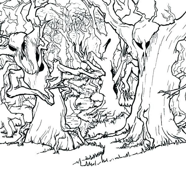 Free Enchanted Forest Coloring Pages at GetColorings Free