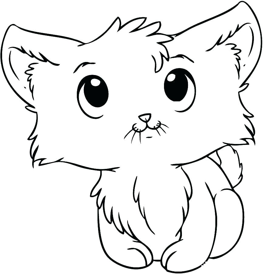 Tabby Cat Coloring Pages At Getcolorings Com Free