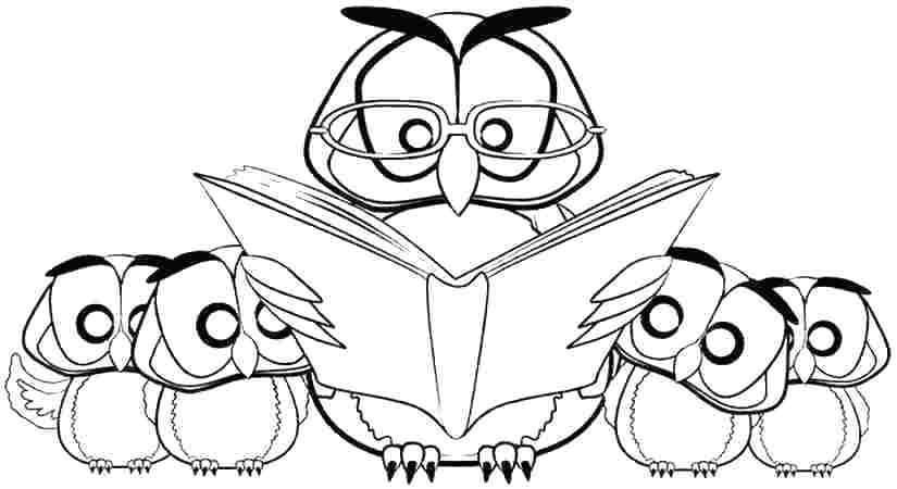Cute Cartoon Owl Coloring Pages at GetDrawings Free for