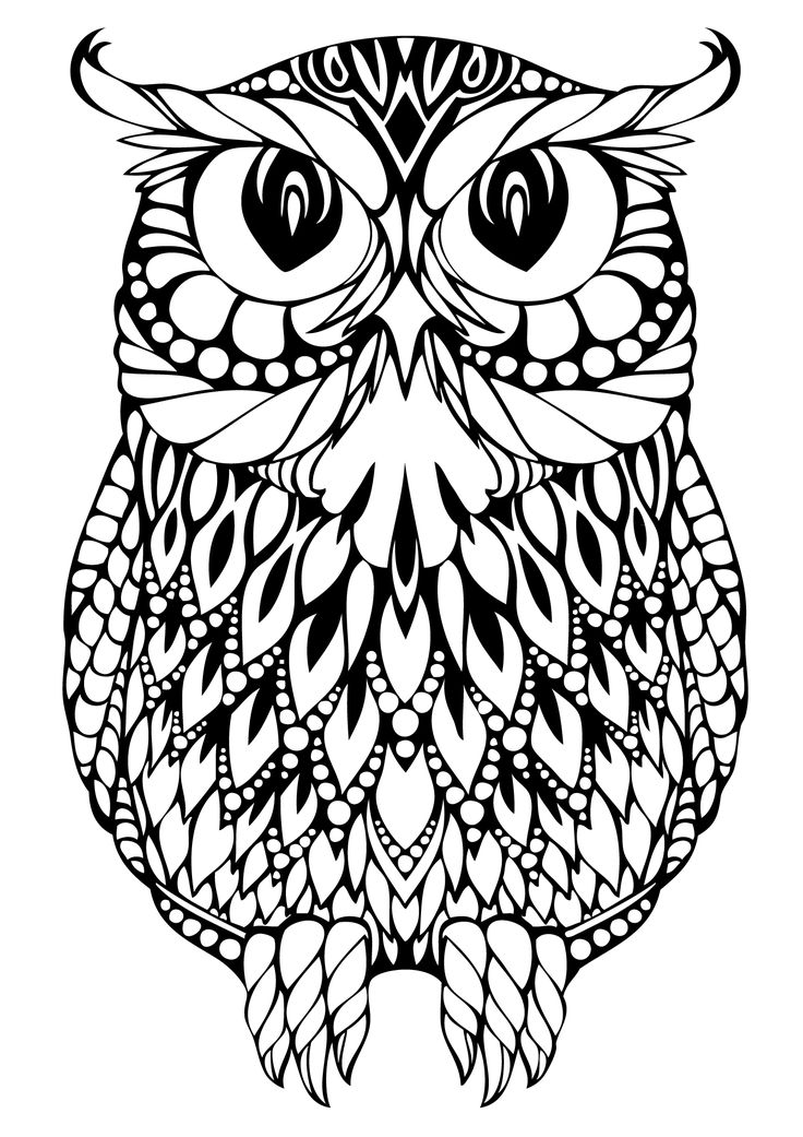 Cute Owl Coloring Pages To Print at GetDrawings Free for