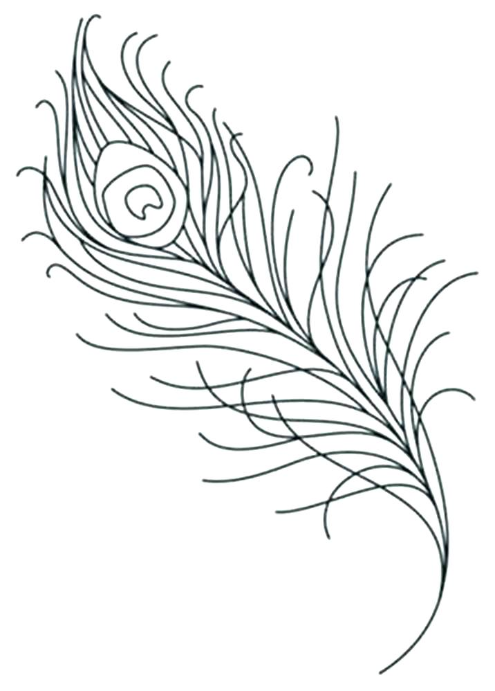 Eagle Feather Coloring Page at GetDrawings Free for personal