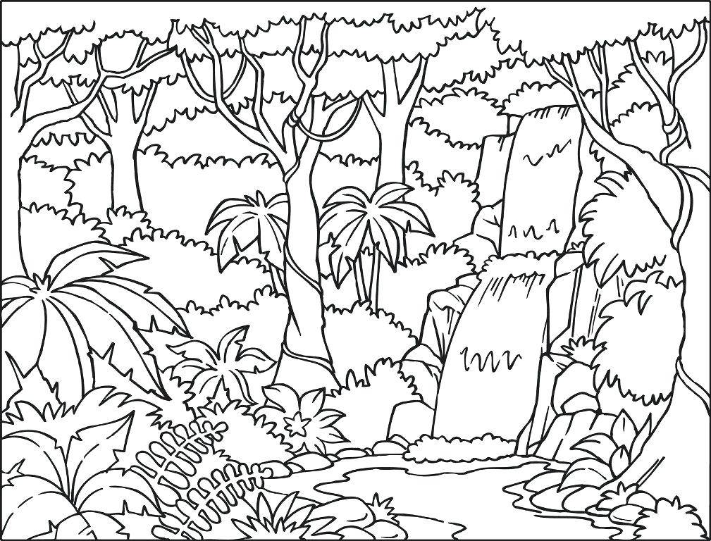 Enchanted Forest Coloring Pages at GetDrawings Free for