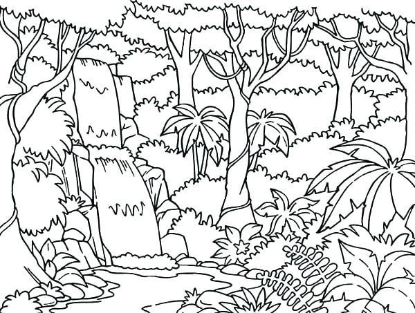 Forest Coloring Pages Printable at GetDrawings Free for