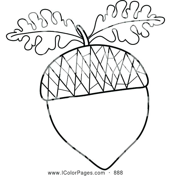The best free Oak leaf coloring page images Download from 1353 free