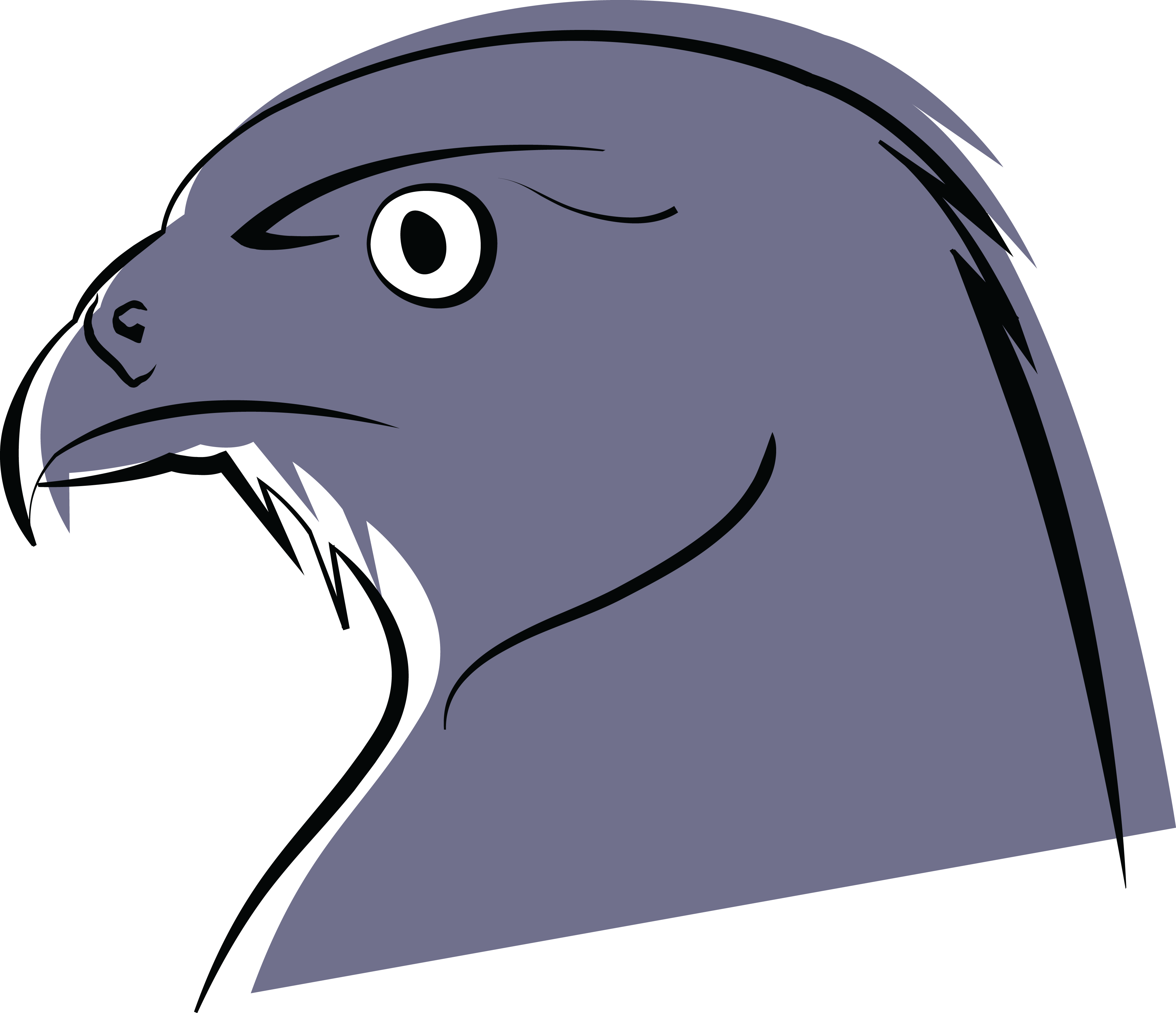 Unkraut Clipart Falcon Head Drawing At Getdrawings Free For Personal Use