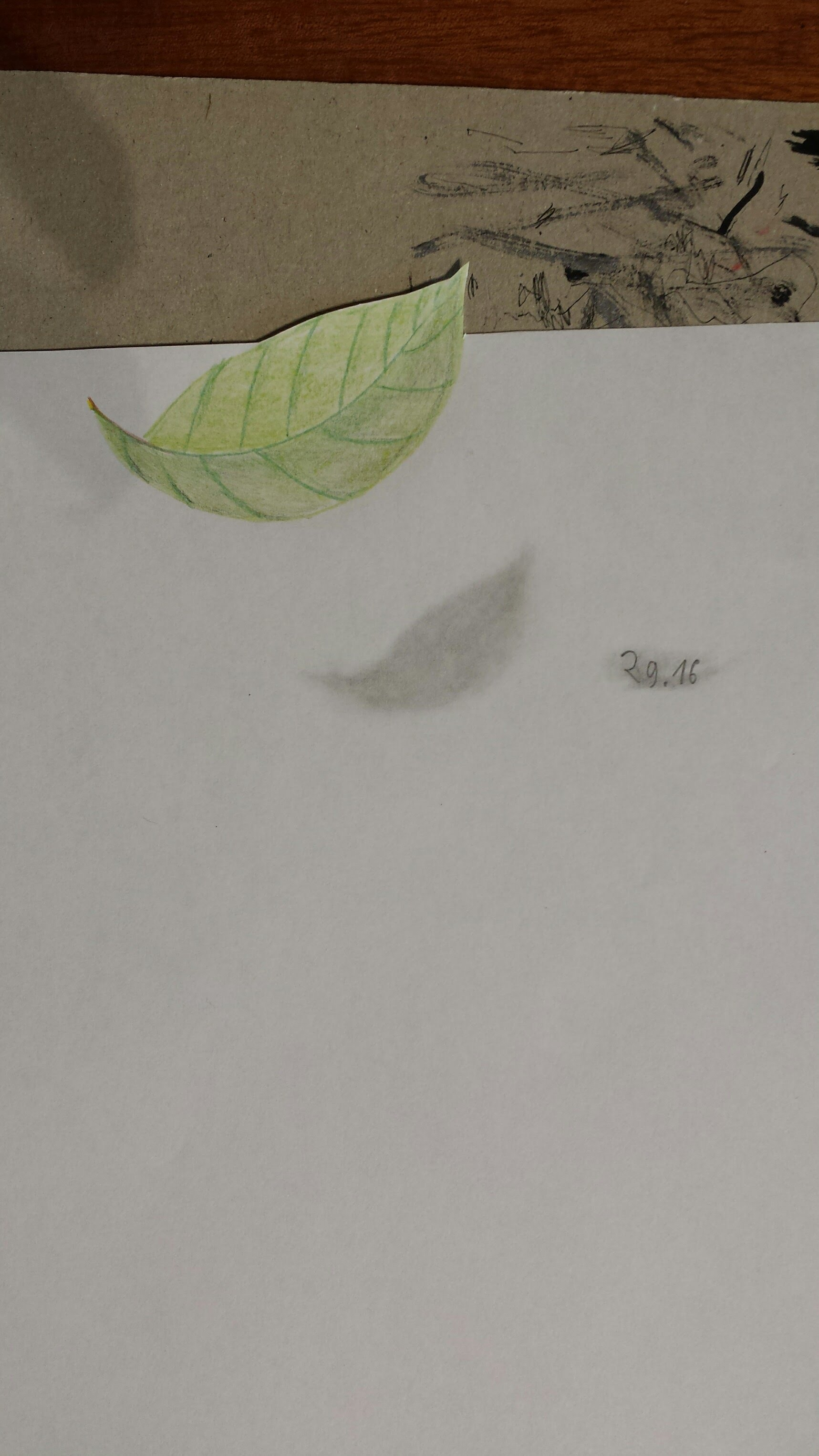 3d Zeichnen Falling Leaf Drawing At Getdrawings Free For Personal Use