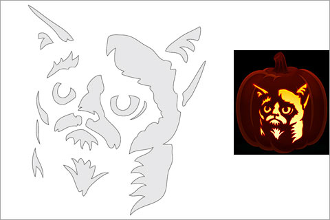 Pumpkin Template Drawing at GetDrawings Free for personal use - cat pumpkin template